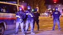 7 قتلى بهجوم مسلح في العاصمة النمساوية فيينا