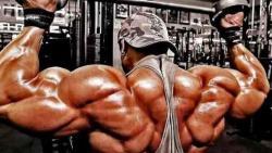 مخاطر حبوب العضلات وكمال الأجسام