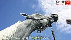 تفسير حلم الحصان البني في المنام