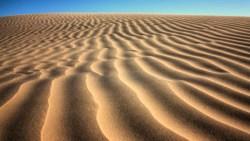 تفسير حلم الرمل المبلل في المنام