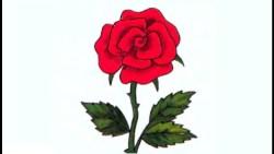 تفسير زراعة الورود في المنام للعزاباء