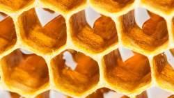 تفسير حلم أكل العسل بالشمع في المنام