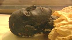 تفسير حلم رؤية فرعون في المنام