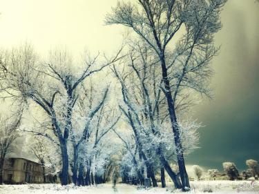 تفسير حلم الثلج لشاب