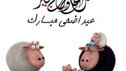 عبارات تهنئة بمناسبة عيد الأضحى المبارك