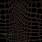 Krokodille læderpapir – sort1129-060