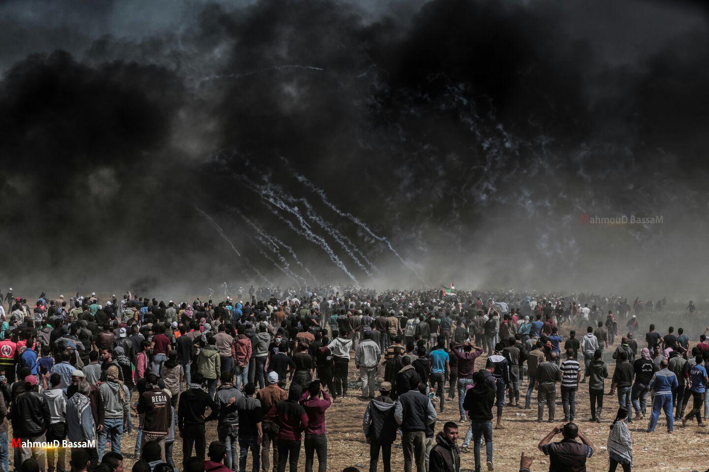 """Résultat de recherche d'images pour """"gaza cerf volant"""""""