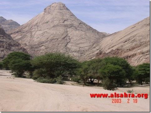 Hima Dhariah 019
