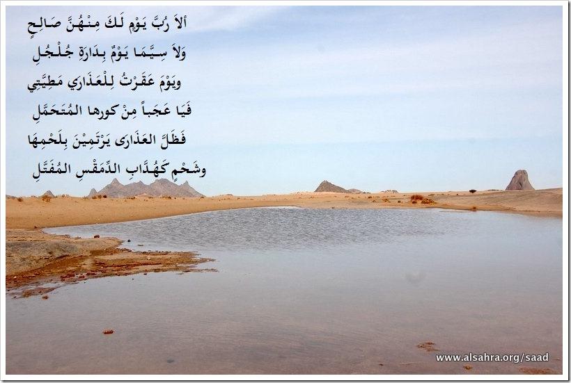 DSC_3773