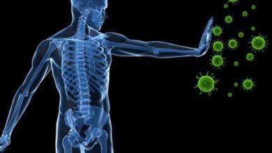 صورة اكتشاف سينقذ حياة الملايين .. ماذا وجد العلماء في جهاز المناعة ؟