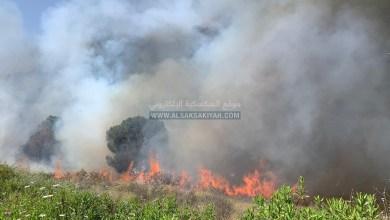 Photo of عاجل انصارية : النيران تلتهم حرش الصنوبر الجوي
