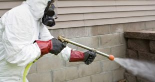 شركة مكافحة النمل الابيض بالرياض بجده بالدمام بالمدينة المنورة