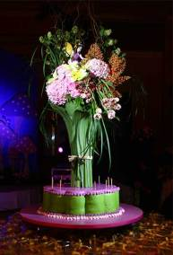 AL-Signature-Events-Childrens-Party-Enchanted-1