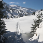 Tour aufs Wildhorn – ohne Wildhorn