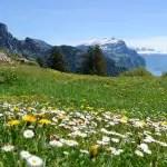 Der Federispitz – versteckte Wege, lange Aufstiege und schöne Aussichten