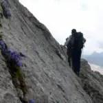 Steinbocktour (4): Heilbronner Höhenweg und tatsächlich ein Steinbock in Sicht
