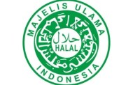 China Belajar Halal Dari Indonesia