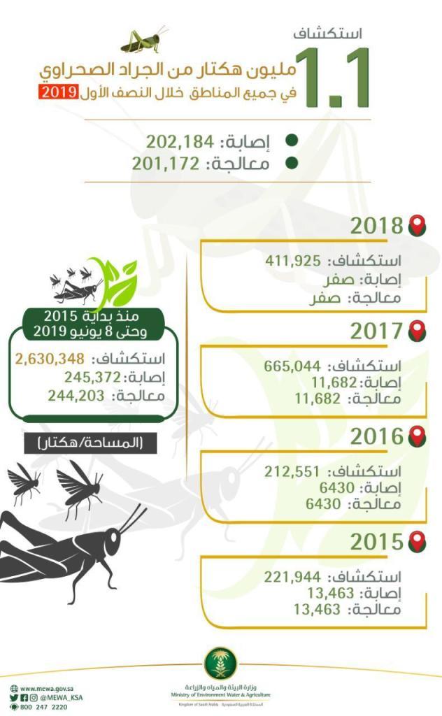 """بلغت 2.6 مليون هكتار منذ بداية 2015م..""""البيئة"""" تستكشف الجراد الصحراوي في مساحة 1.1 مليون هكتار خلال 6 أشهر"""