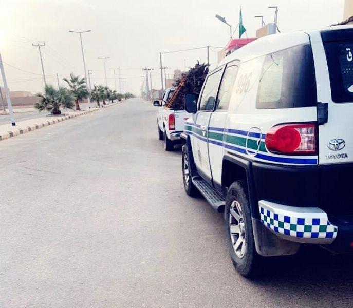 أمن الطرق تضبط شاحنات ومركبات محملة بالحطب المحلي