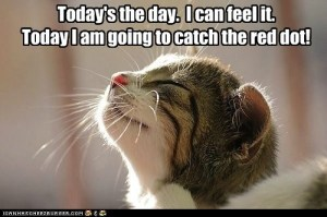 Today's the day I can feel it! Today's the day I am going to catch the red dot!