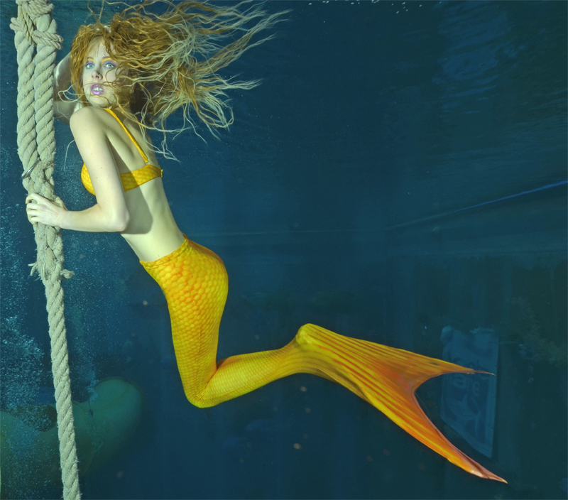 Mermaid Elischeba  Elischeba  Reise Lifestyle
