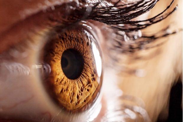 Abusar de las pantallas afecta la salud visual y el daño puede ser irreversible