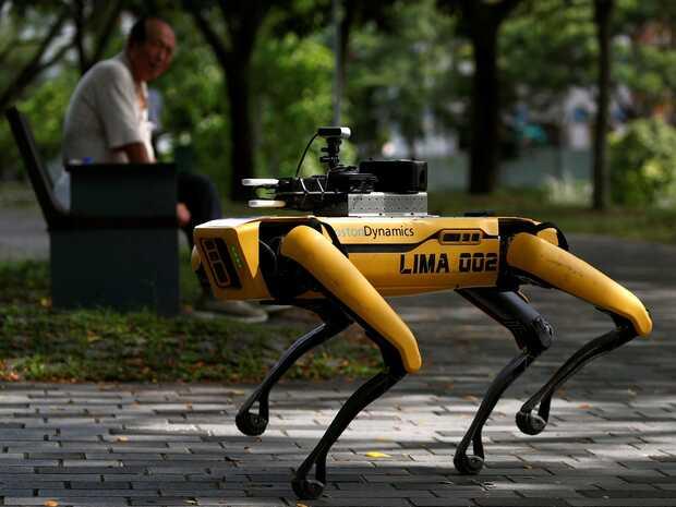 Perro robot patrulla parques de Singapur y da un mensaje importante