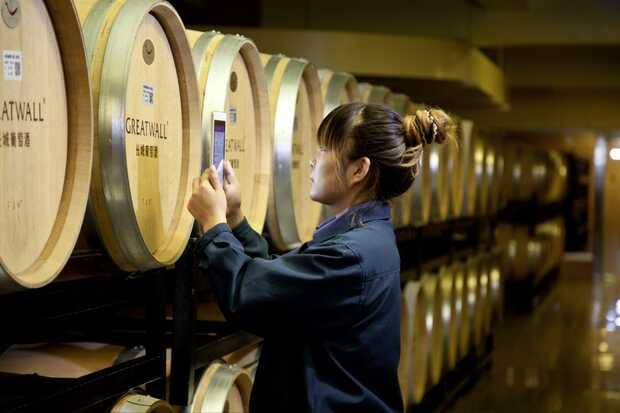 Arte y tecnología: el maridaje perfecto del vino de China