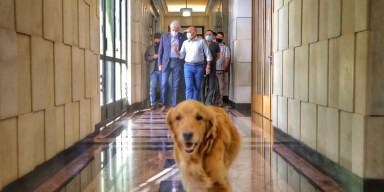 Lockdown foi anunciado no Palácio (Foto: Jackson Rodrigues)