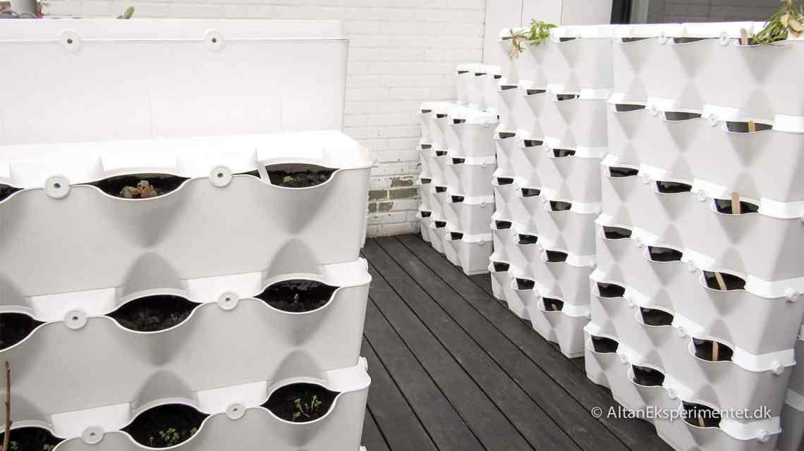 Forberedelser til plantevæg