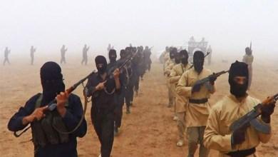 صورة « آيات الجهاد » في خطاب «جماعات الإرهاب» (8)