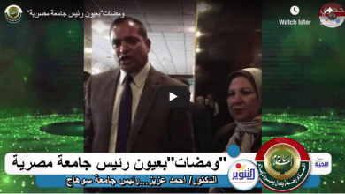 صورة «رسالة السلام» في عيون رئيس جامعة مصرية