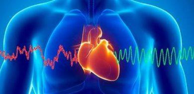 صورة «القلب» في السياق القرآني