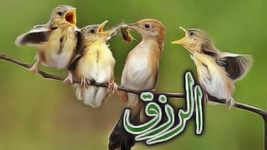 Photo of «الرزق» الحقيقي في محكم التنزيل