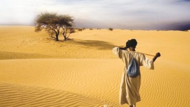 Photo of «ابن السبيل» حماية إلهية للغرباء
