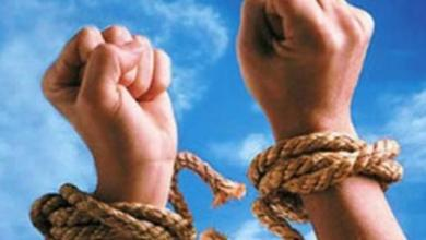 الإسلام دين الحرية - علي محمد الشرفاء