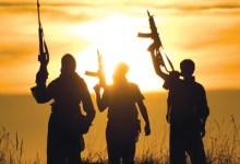 حكايات جماعات الإرهاب