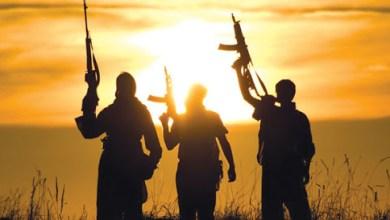 Photo of حكايات جماعات الإرهاب