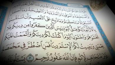 الطيبات والمحرمات في الإسلام
