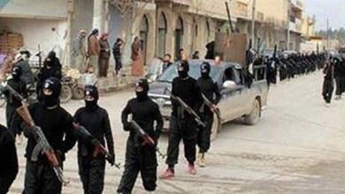 النشاط الإرهابي