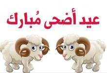 Photo of تهنئة «رسالة السلام» بعيد الأضحى المبارك