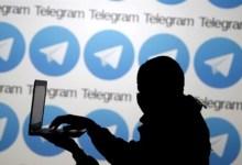 الإرادة المصرية-تكنولوجيا المعلومات