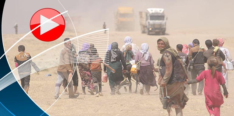 الولايات المتحدة الإنسانية