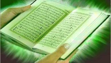مهمة الرسول-أحكام ملزمة للمسلمين-ما أنزل على الرسول-الكثير من الآيات