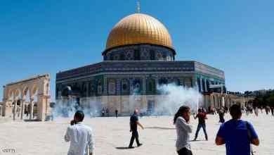العرب والمسلمون