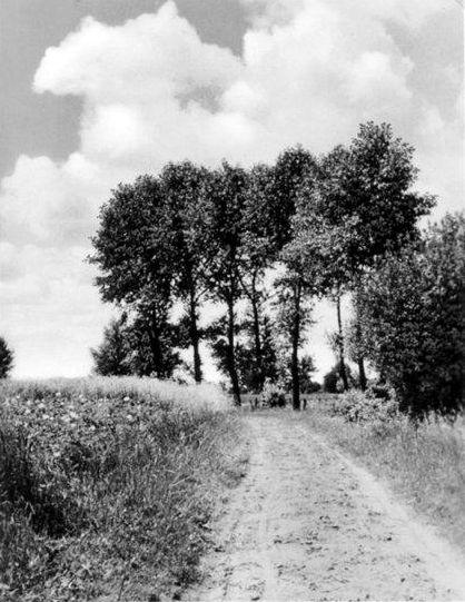 -68- Burgesch