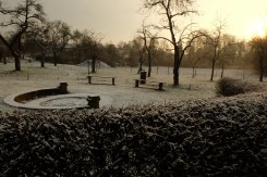 Obstwiese Winter