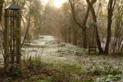 Apfelbaum Allee Winter