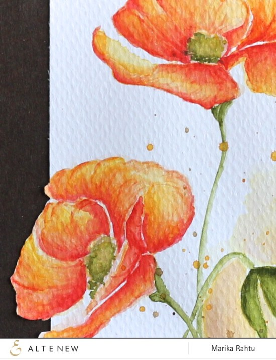 Stamps used: Painted Poppy.