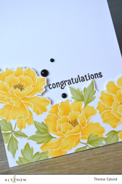 congratulations - Detail copy